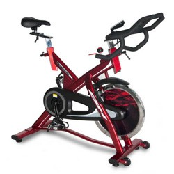 LK500 Indoor Cycle LK500iC
