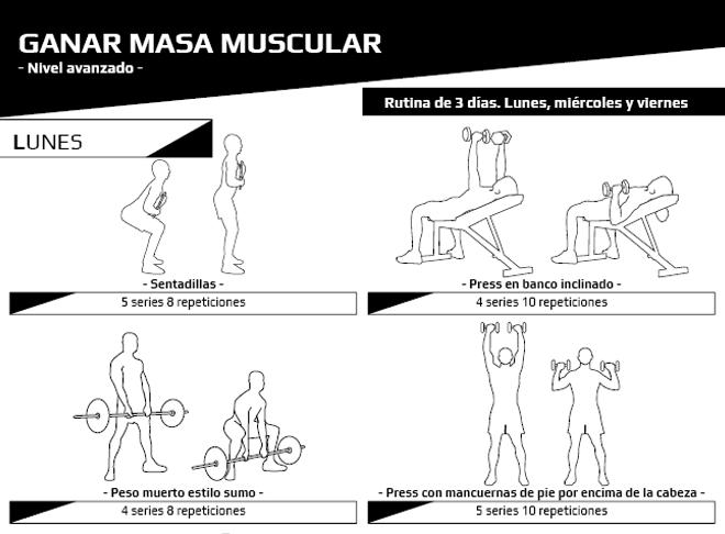 Avanzado - Masa muscular